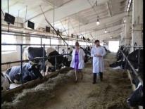 Агрохолдинг Марата Салихова