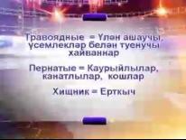 Выпуск 27.11.2014